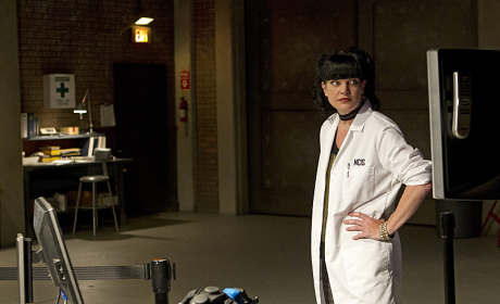 Pauley Perrette as Abby Photo