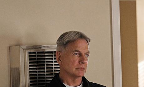 L. J. Gibbs Looks On