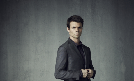 Daniel Gillies Confirmed for The Vampire Diaries Spinoff
