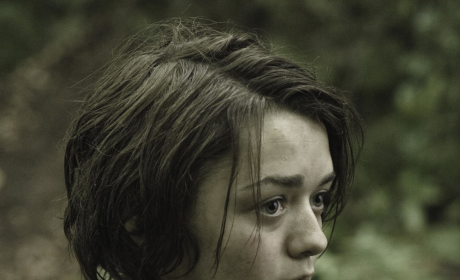 Maisie Williams as Arya Stark
