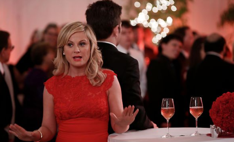 Parks and Recreation Review: Mrs. Leslie Knope and Mr. Ben Wyatt