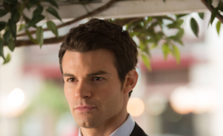 Daniel Gillies Previews Return to The Vampire Diaries, Another Clean-Up for Elijah