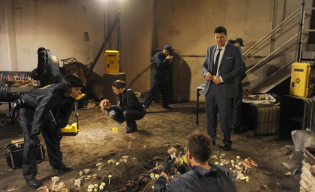 Bones Review: The Secret Is In The Sauce