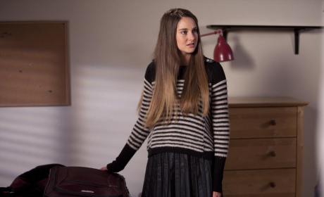 The Secret Life of the American Teenager Review: Dreams Divided