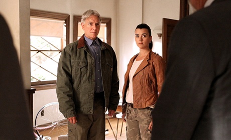 NCIS Season 11 Spoilers: A Team Divided?