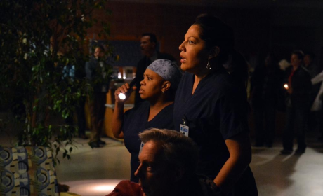 Bailey and Callie Picture