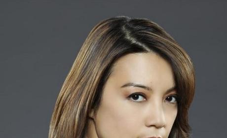 Ming-Na Wen as Agent Melinda May