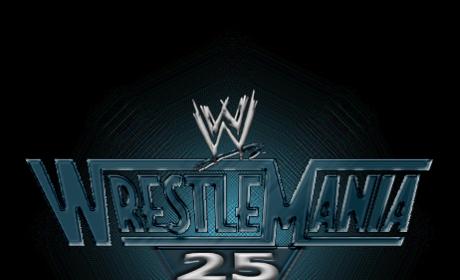 WWE Spoilers: Rumored Wrestlemania 25 Matches