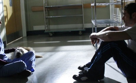 Grey's Anatomy Caption Contest XLIV