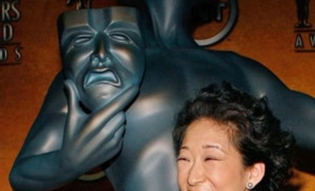 Grey's Anatomy Nets Pair of Screen Actors Guild Nominations