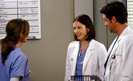 Grey's Anatomy Fans Petition for Show Changes