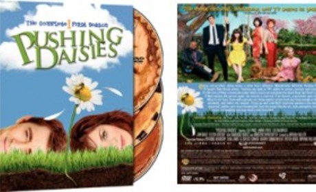 Pushing Daisies Season One DVD Release Date, News