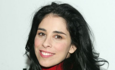 Sarah Silverman Cast on The Good Wife As...