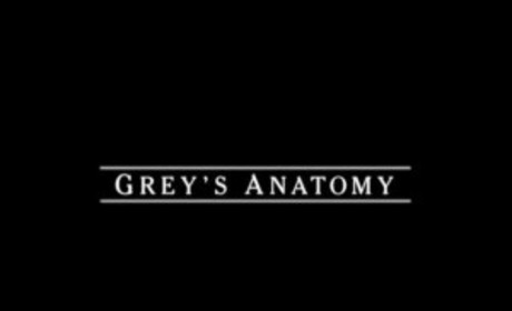Grey's Anatomy Casts Bevy of Minor Roles