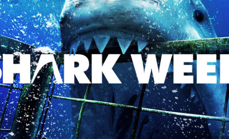 Shark Week Schedule: Sink Your Teeth Into It!