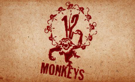 Syfy Green Lights 12 Monkeys TV Series