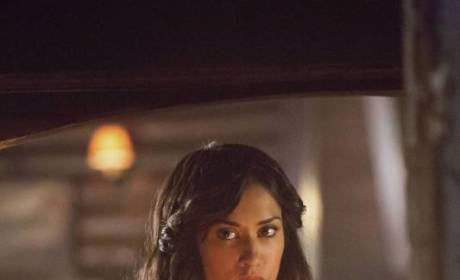 Janina Gavankar on The Vampire Diaries