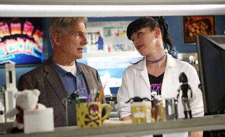 NCIS Spoilers: Gary Glasberg on Life Post-Ziva, Gibbs' Journey, Spinoff & More