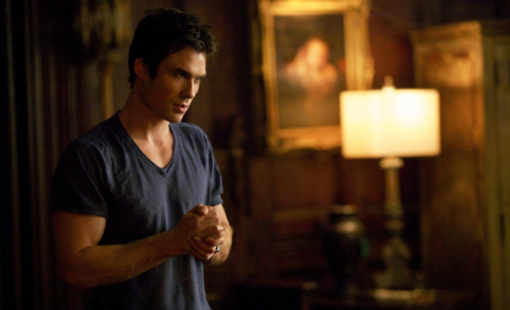 Delicious Damon Salvatore