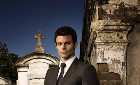 The CW Picks Up The Originals, Reign and The Tomorrow People for Full Seasons