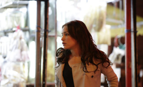 Covert Affairs Review: Hello, Ms. Walker