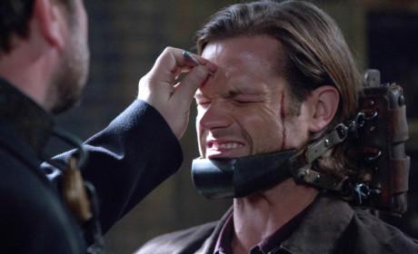 Pain for Sam