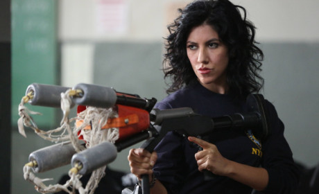 Brooklyn Nine-Nine Review: Entering Sprinkle City