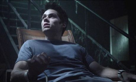 Stiles Bound by Oliver