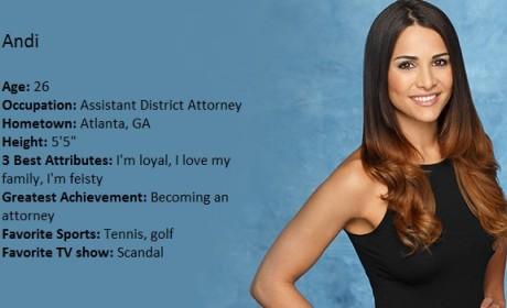 Andi Dorfman to Be the Next Bachelorette?