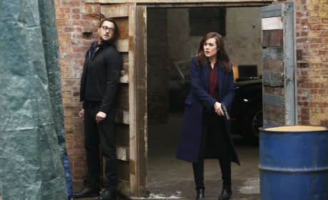 The Blacklist: Watch Season 1 Episode 17