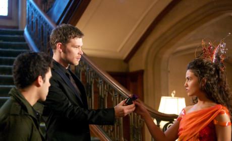 Were you shocked that Klaus pardoned Josh on The Originals?