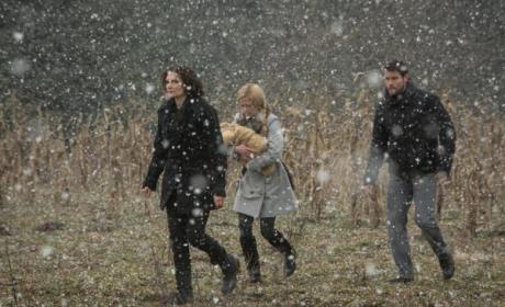 Grimm: Watch Season 3 Episode 17 Online