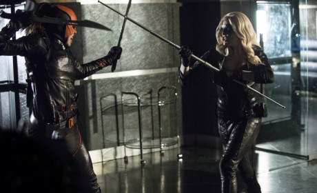 Canary vs Ravager