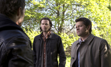 What would you grade Supernatural Season 9?