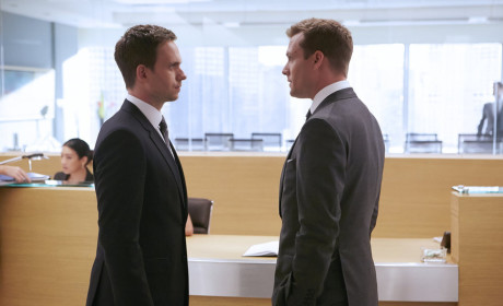 Suits: Renewed for Season 5!