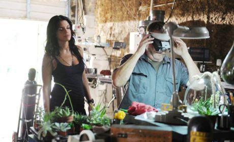 Graceland: Watch Season 2 Episode 12 Online
