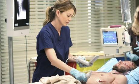 Ellen Pompeo to Quit Acting After Grey's Anatomy?