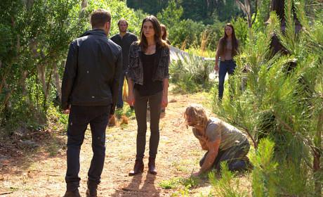 Bent on Revenge - The Originals Season 2 Episode 2