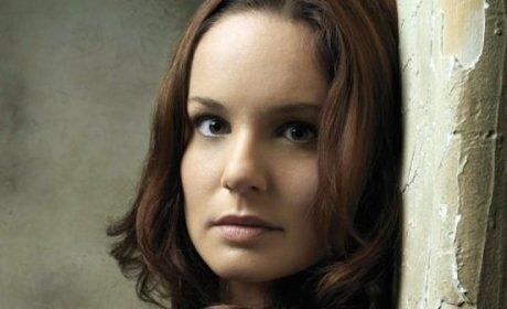 Sarah Wayne Callies Cast Opposite Josh Holloway in Colony