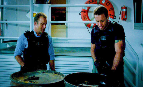 Hawaii Five-0 Season 5 Episode 6 Review: Unmasked