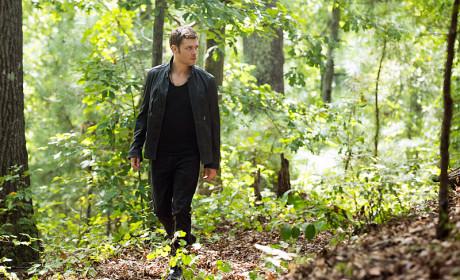 Klaus in the Bayou - The Originals