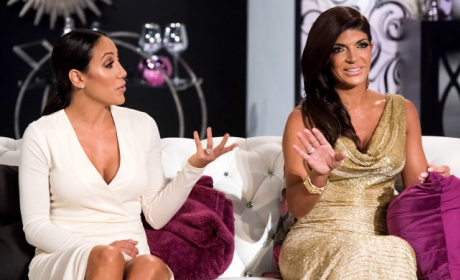 The Real Housewives of New Jersey: Watch Season 6 Episode 17 Online