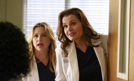 Herman and Arizona - Grey's Anatomy Season 11 Episode 8