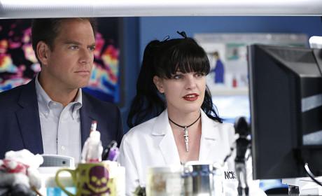 What Has Abby Found? - NCIS Season 12 Episode 8