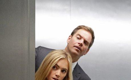 NCIS: Watch Season 12 Episode 8 Online