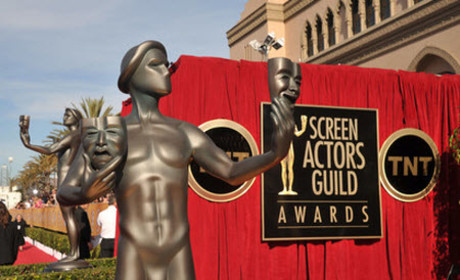2015 SAG Awards: Who is Nominated?