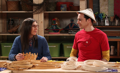 The Big Bang Theory: Watch Season 8 Episode 12 Online