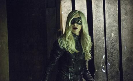 Startled - Arrow Season 3 Episode 11