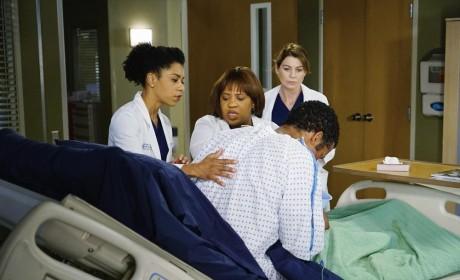 Grey's Anatomy Season 11 Episode 12 Review: The Great Pretender