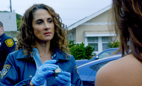 ATF Agent  - Hawaii Five-0 Season 5 Episode 16